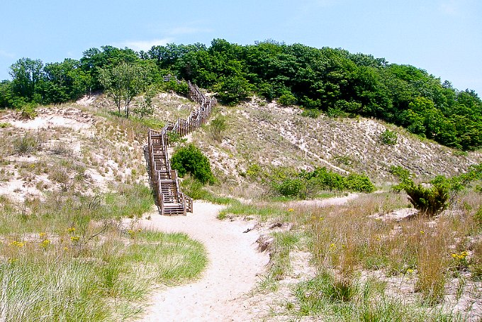 A sand dune with wood stairs at Indiana Dunes National Park.