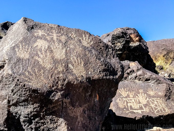 Rocks covered with petroglyphs at Petroglyph National Monument.