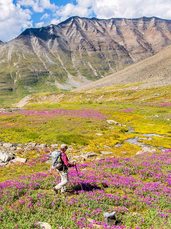 A person hiking in Wrangell St. Elias National Park.