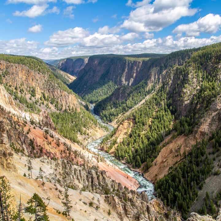 A valley with a river running through it in Yellowstone National Park.