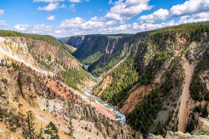 A canyon and river in Yellowstone National Park.