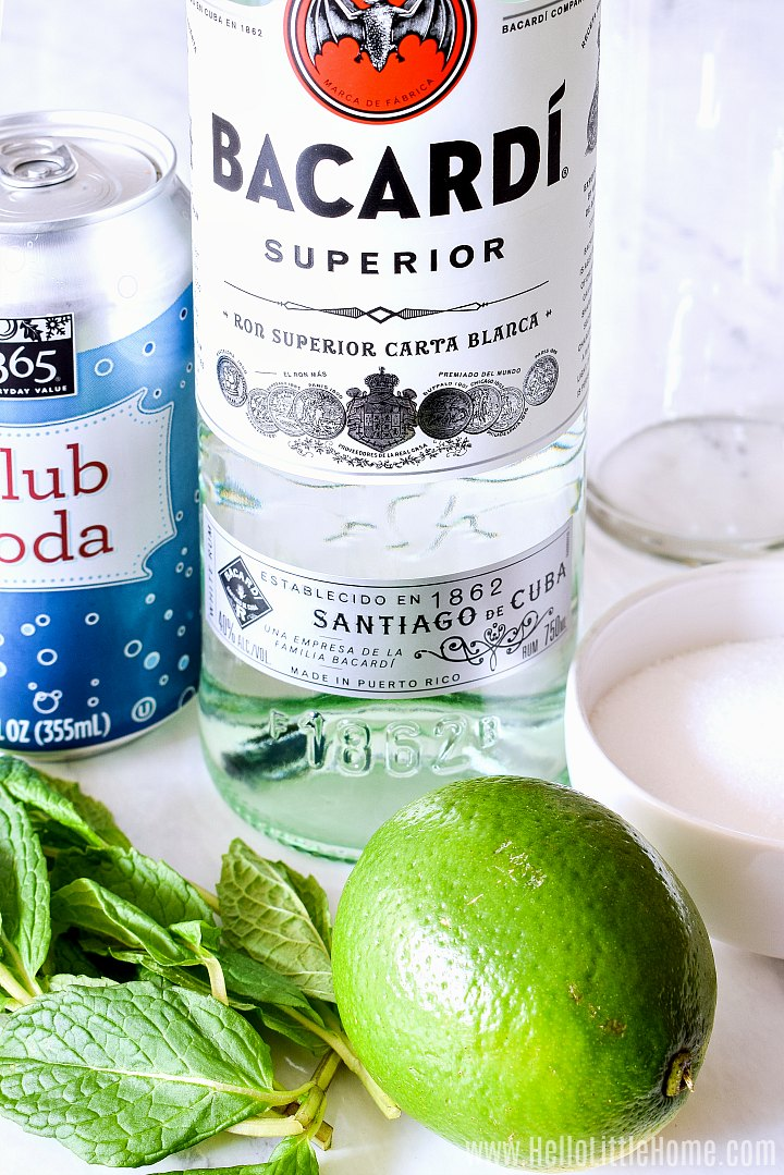 Mojito ingredients: rum, club soda, mint, lime, and sugar.