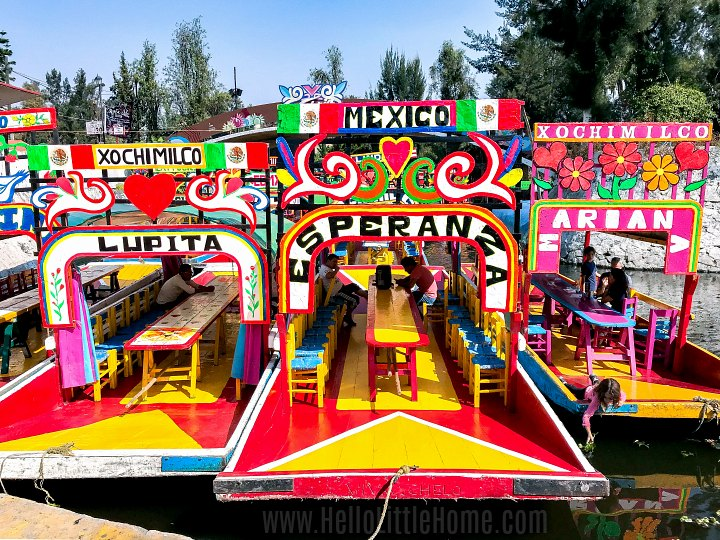 Colorful trajineras (boats) in the canals of Xochimilco.