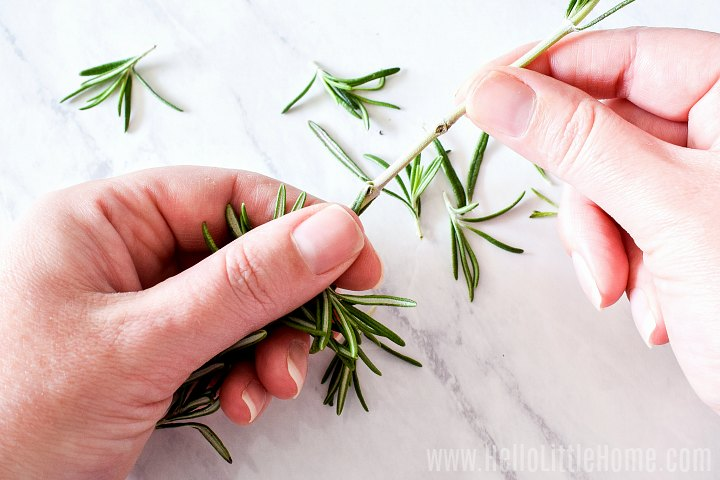 Removing herbs from stems.