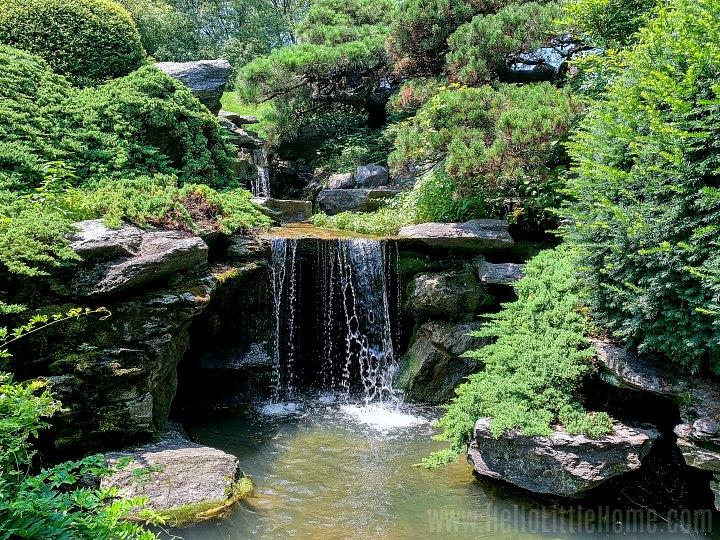 A waterfall in the Brooklyn Botanic Garden.