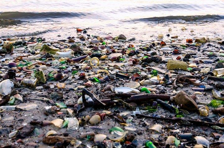 Heaps of bottles covering Glass Bottle Beach in Brooklyn.