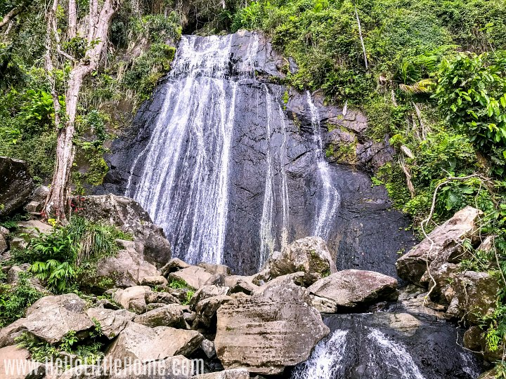 A tall waterfall surrounded by green plants in El Yunque Rain Forest.