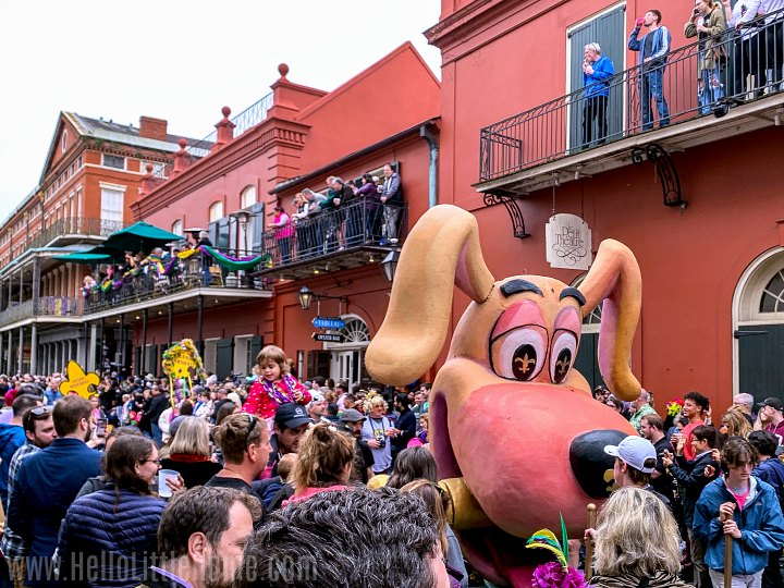A dog shaped float at the Krewe of Barkus parade in the French Quarter.