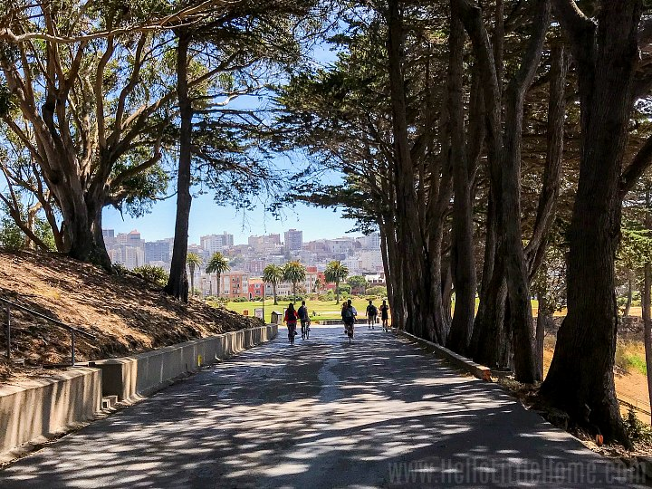 People walking on a tree-lined path in San Francisco's Presidio.