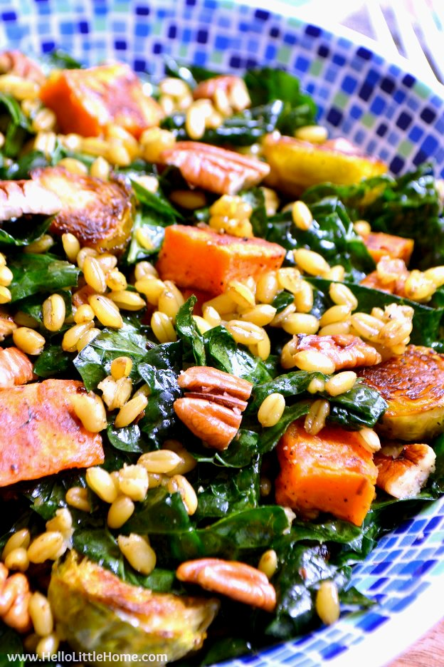 A Roasted Vegetable Kale Salad with sweet potatoes, pecans, brussels sprouts, and freekeh.