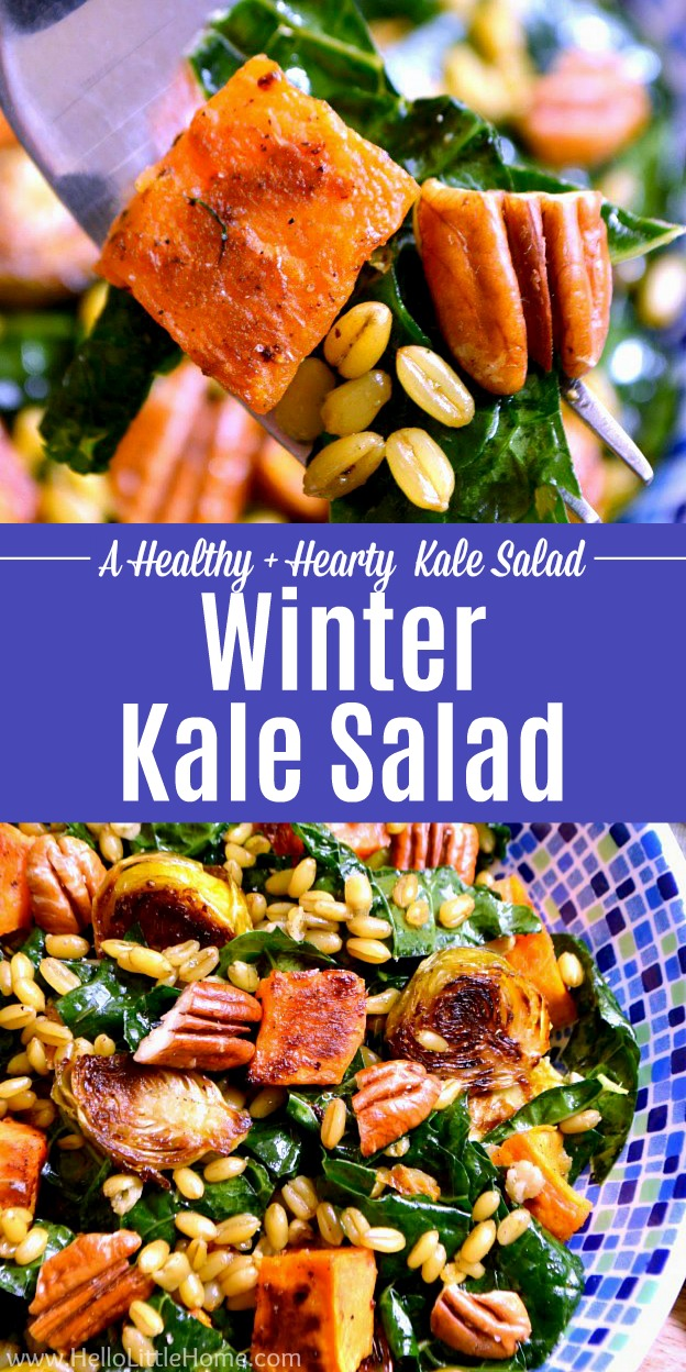 A collage of winter kale salad photos.