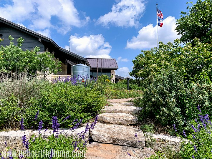 A stone path with lots of plants at the park headquarters at Mother Neff State Park.