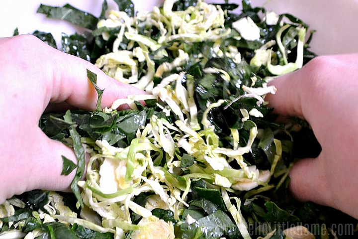 Hands massaging kale and shredded brussels sprouts together in a bowl.