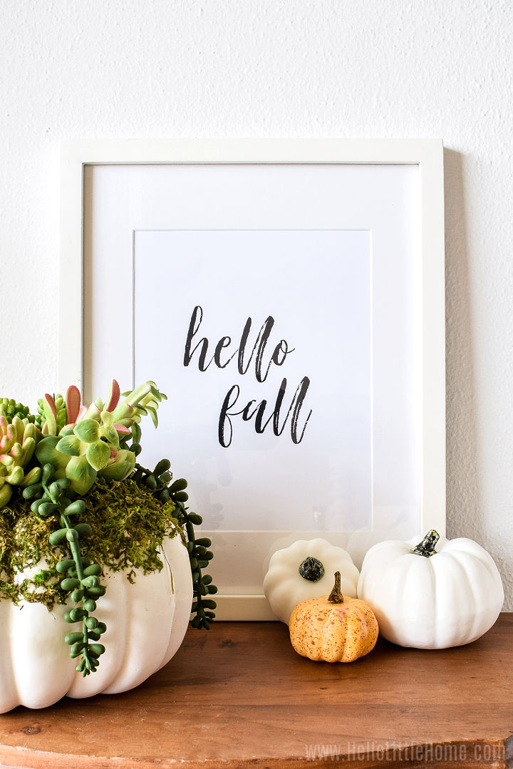 A fall printable in a white frame next to mini pumpkins and succulents.