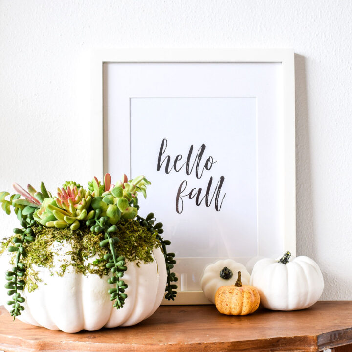 Hello Fall Printable, autumn succulent arrangement, and mini pumpkins on a wood table.
