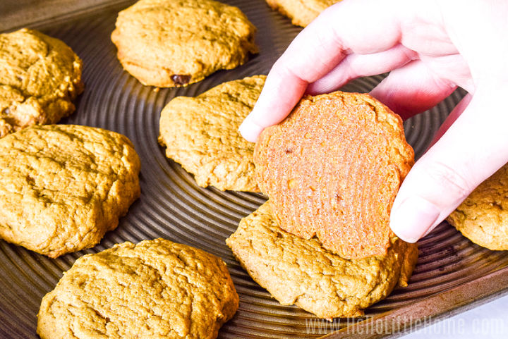 A hand showing the bottom of a baked cookie in front of a baking sheet filled with more cookies.