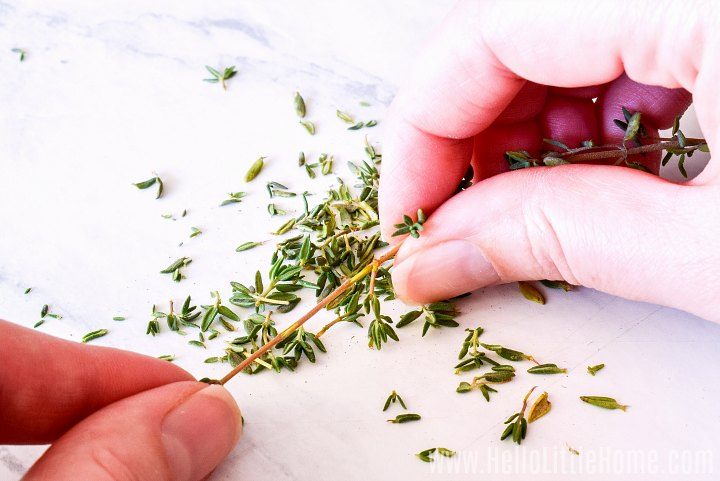 A hand holding a sprig of thyme and removing the leaves.