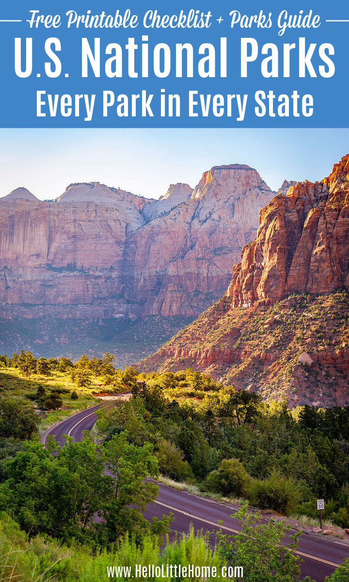 A road surrounded by red mountains and trees in Zion National Park.