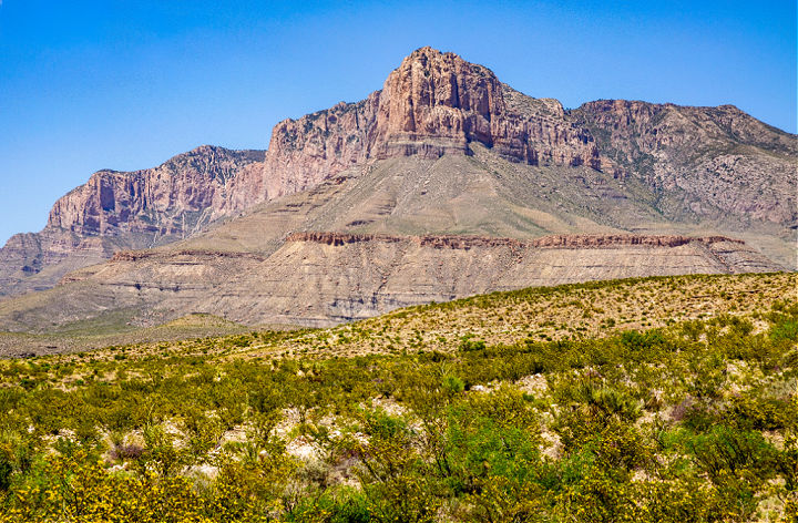 A field with El Capitan in the distance at Guadalupe Mountains National Park.