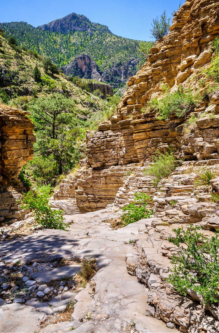 A rocky trail at Guadalupe Mountains National Park.