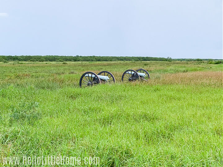 Two cannons in a grassy field at the Palo Alto Battlefield National Historical Park.
