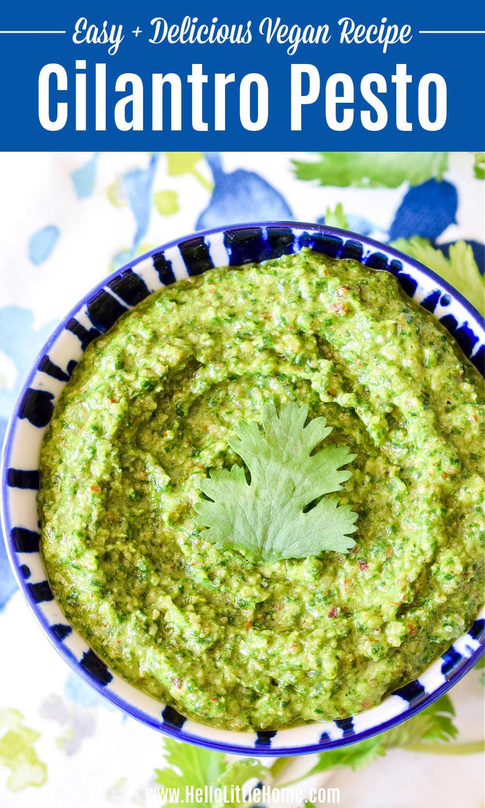 A bowl of Cilantro Pesto Sauce topped with fresh Cilantro.