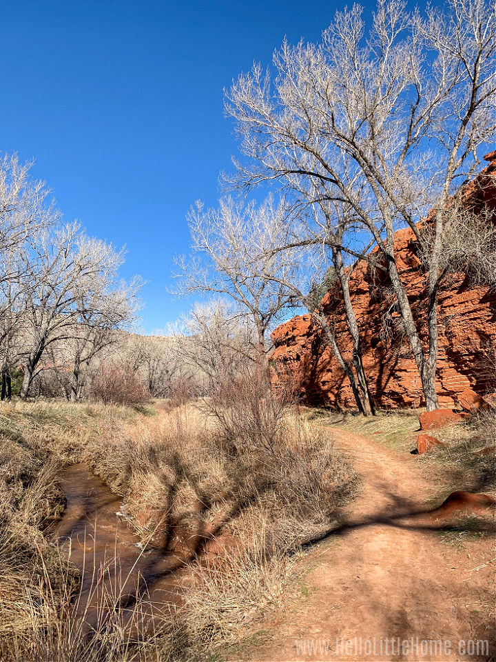 A hiking trail between a river and cliff in Palo Duro Canyon State Park.