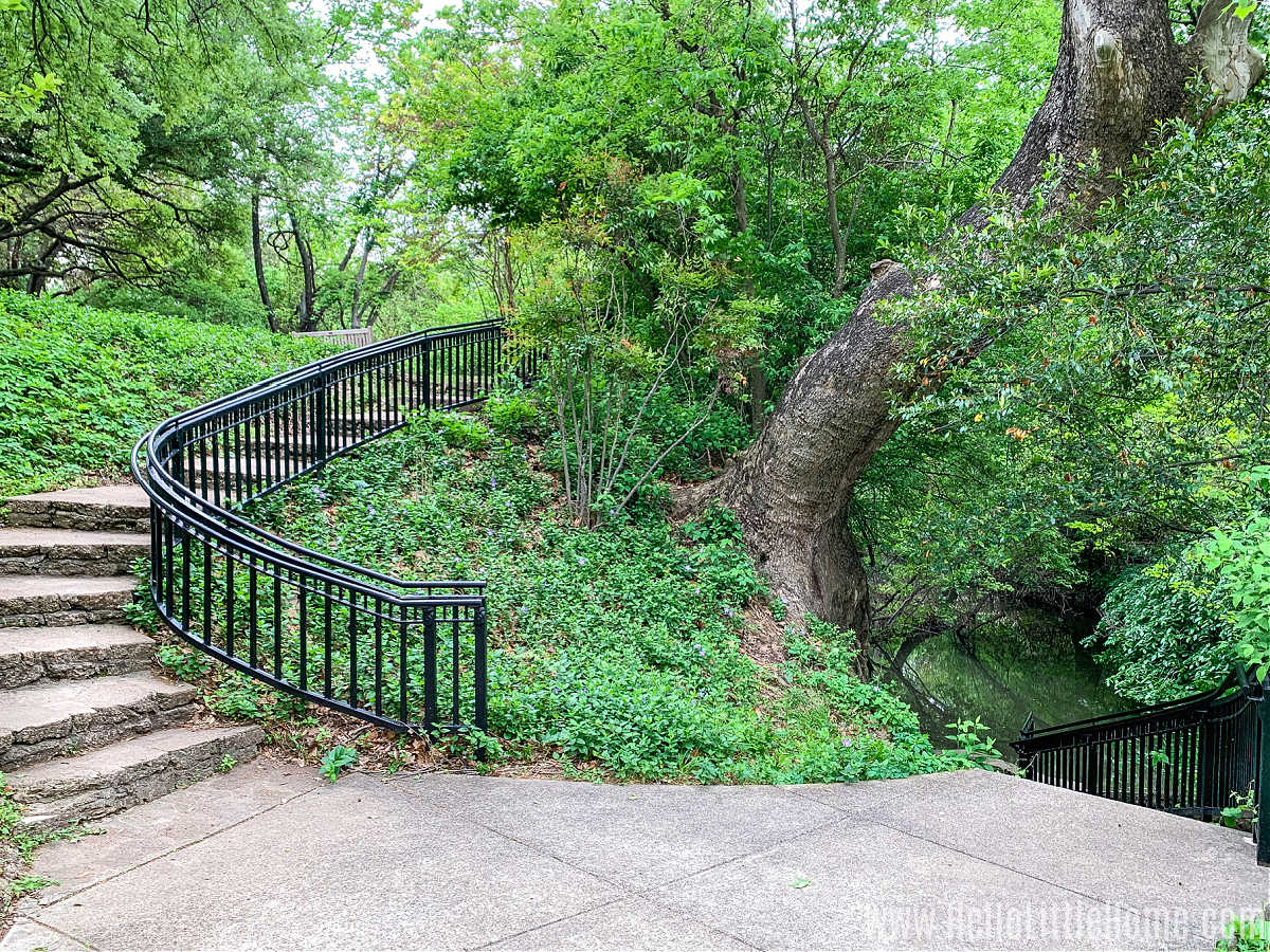 Two staircases, one leading up and one leading down, with a tree in the middle.