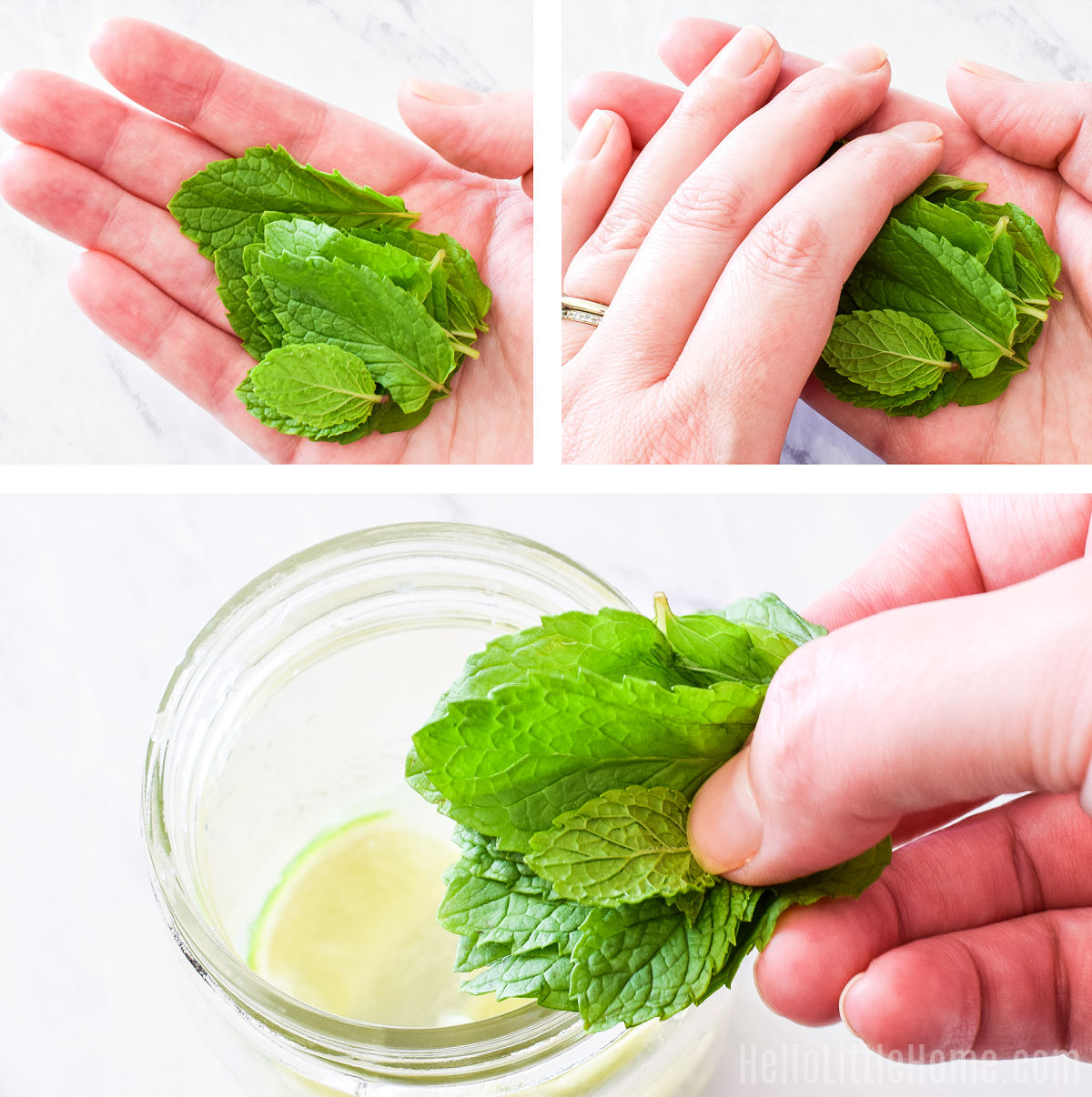 A photo collage showing how to prepare mint for the drink.